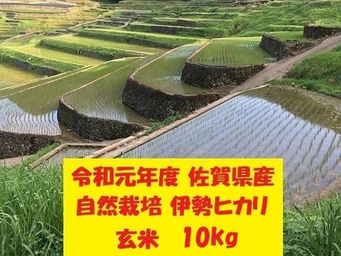 【令和元年新米】無農薬!自然栽培!佐賀県産!「伊勢ヒカリ」玄米10kg
