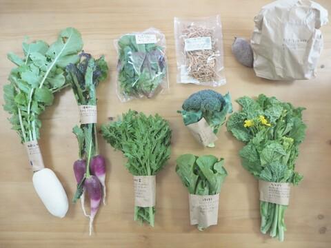 スローも時短も楽しめる!有機野菜・ドライ野菜のセット