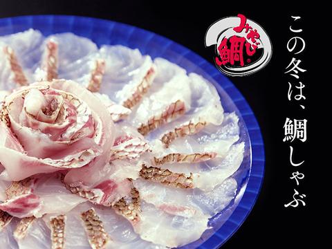 みやび鯛しゃぶしゃぶ2皿セット(約4人前) TV番組 ジョブチューンで寿司職人絶賛のみやび鯛!!