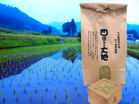 四億年の大地米コシヒカリ 玄米 5kg