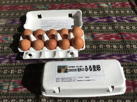 初回限定!送料分割引!放し飼いの鶏が産んだ卵20個入りお試しセット