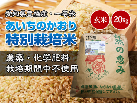 【栽培期間中農薬不使用・一等米】あいちのかおり 玄米20kg(10㎏×2袋)【令和2年・愛知県産】
