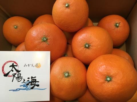 愛媛限定みかん☆太陽と海のまどんな☆ご家庭用☆混合サイズ☆5Kg