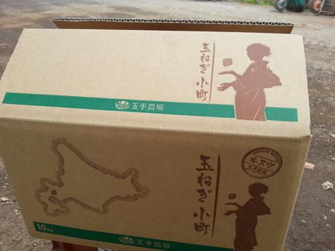 【北海道】小さなかわいい玉ねぎ 5kg