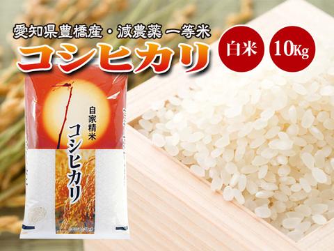 【減農薬・一等米】令和2年 愛知県産 新米コシヒカリ 白米10kg