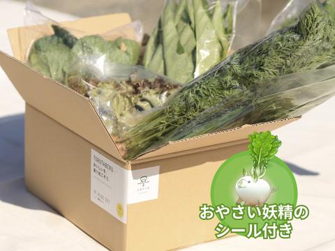 【食育やさいBOX】(冬の有機野菜Mセット)にんじん、水菜、小カブなど【6〜8品目】