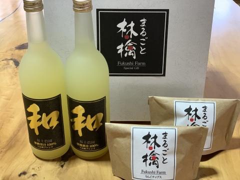【夏ギフト】まるごと林檎スペシャルギフト(りんごジュース2本、りんごチップス2袋)