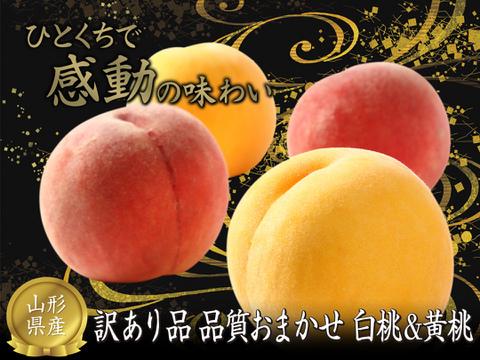 【まだまだ桃が食べたい!】果樹王国山形からお届けする 訳あり品 白桃・黄桃 品種おまかせ 約2㎏(5玉~9玉入り) MO01-01