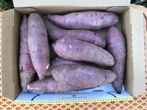 【鹿児島産】甘塩サツマイモ箱込み1.5キロ^_^