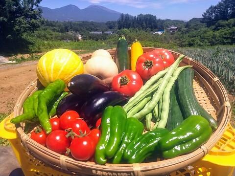 標高800mで育った高原野菜(9-10品目)野菜セットS