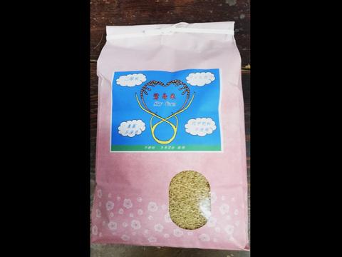 農薬、化学肥料不使用*鷺島米 キヌムスメ 30kg