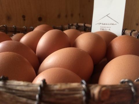 【北海道から全国発送】平飼い鶏の有精卵「ぽんあびらん」 30個セット【2/下旬~発送予定】