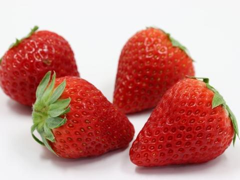 【人気商品】愛知県産いちごのしあわせ(紅ほっぺ)40粒以上