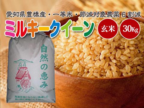 【節減対象農薬6割減・一等米】 ミルキークイーン 玄米30g【令和2年・愛知県産】