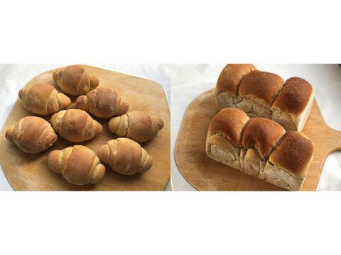 【超貴重な有機JAS認証パン】パンセット⑥+⑨:麦の栽培から一貫生産 自然栽培小麦のみ使用したテーブルロール×8 + 食パン2個