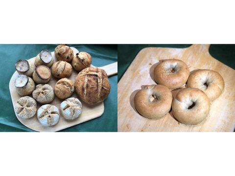 【超貴重な有機JAS認証パン】パンセット⑭+⑪:麦の栽培から一貫生産 自然栽培小麦のみ使用したハード系パンセット+ベーグルセット