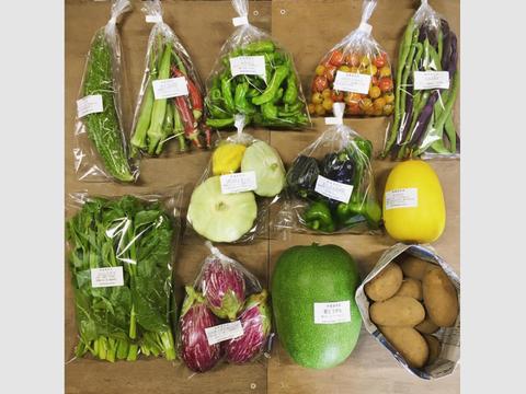 【無農薬】採れたての旬の野菜 Lセット(8-10品目入り)