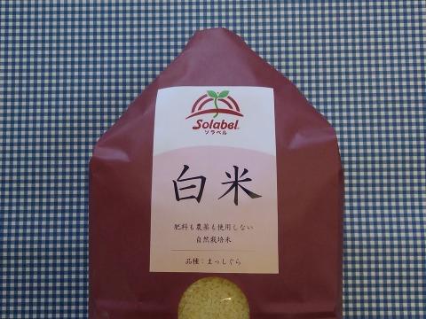 【りえりえ様専用】♥️白米(4分つき)3kgと1kg♥️味噌250g♥️