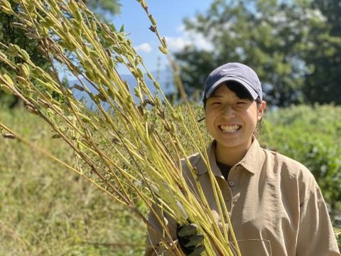 黒胡麻 100g 自然栽培 令和2年産 胡麻の国内自給率は0.1%!