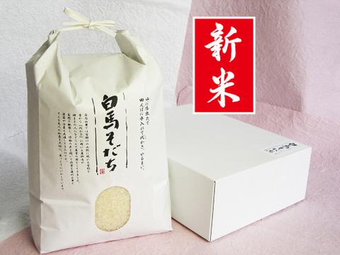 【新米】特別栽培 つきあかり(2kg)【令和3年産】