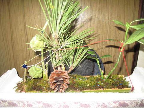 苔アート、もののけの森の花鳥風月 キラキラ青竹仕様
