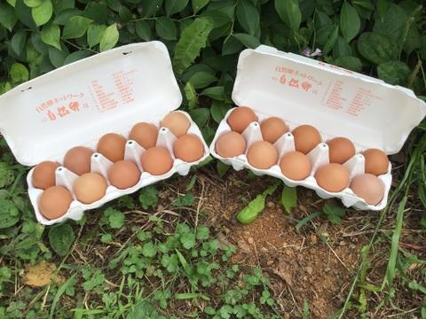 平飼い有精卵2パック、20個