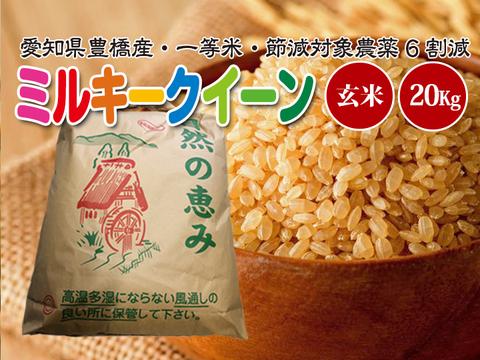 【節減対象農薬6割減・一等米】ミルキークイーン 玄米20g【令和2年・愛知県産】