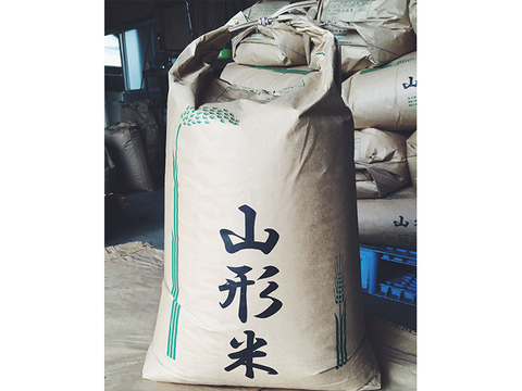 令和2年産  【つや姫玄米10kg +雪若丸玄米10kg】セット  山形県飯豊町産
