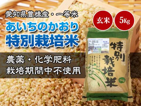 【栽培期間中農薬不使用・一等米】あいちのかおり 玄米5kg【令和2年・愛知県産】