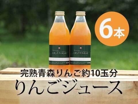 完熟青森りんご100%【しぼってそのまんま】濃厚りんごジュース(1L×6本入)