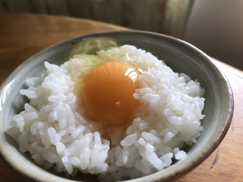 しあわせ卵かけご飯 土佐ジローと平飼い卵セット40個