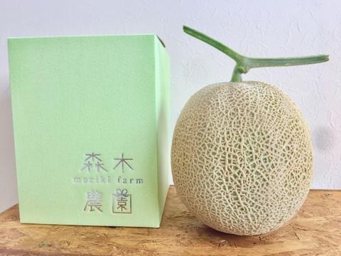 数量限定【メロン2玉セット】一果穫りの贅沢果実アールスメロン