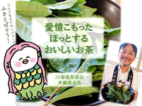 【たっぷり3袋セット】会えない方にも★お茶通・審査員を唸らせた名店のこだわり★熊本直送!有機JAS緑茶(100g)✕3袋