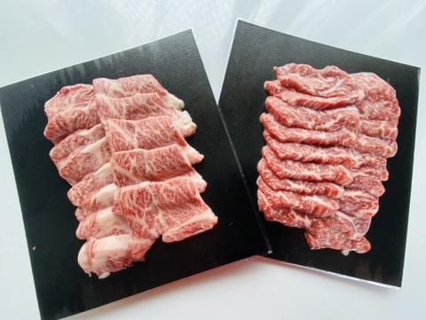 【信濃美味牛】 霜降り&赤身 食べ比べ 焼肉カット 400g