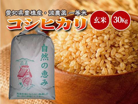 【減農薬・一等米】令和2年 愛知県産 新米 コシヒカリ 玄米30g(10㎏×3袋)