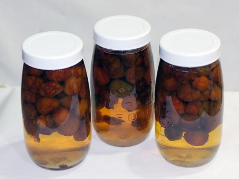 【無添加】美味しい梅シロップ原液(1600ml入)3本セット