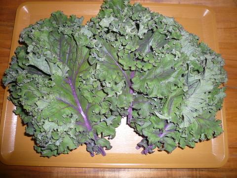 優れた栄養価で緑黄色野菜の王様!カリーノケール ロッソ バラ詰め1㎏