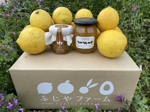 【初回限定BOX】「ふじやファーム」お試しセット 大崎上島産 B級品レモン2kg レモンマーマレード1本 みかんハチミツ1本
