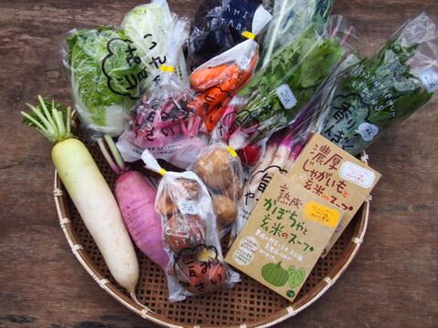 栄養価コンテスト4冠達成!旨み野菜セット【Sサイズ×2】