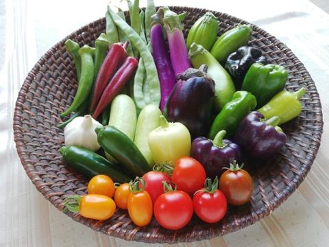 無農薬野菜セットS