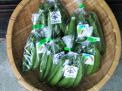 【初回限定BOX】 ホクホクグリーンピース&甘々スナップエンドウ 世界農業遺産 にし阿波ブランド野菜シリーズ