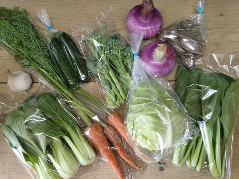 ニンニク大好きさんのための農園自慢の情熱野菜セット7品目★ニンニク5個追加