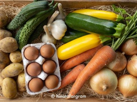 丹波篠山の旬のお野菜と卵の10点詰め合わせセットS