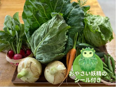 【食育やさいBOX】4月ののびのび野菜セット