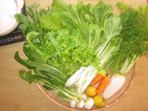 瀬戸内海から冬のお鍋用お野菜便(8品目程度 4~5名様分)
