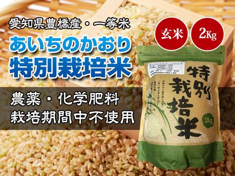 【農薬不使用・一等米】愛知県産 あいちのかおり 玄米2kg