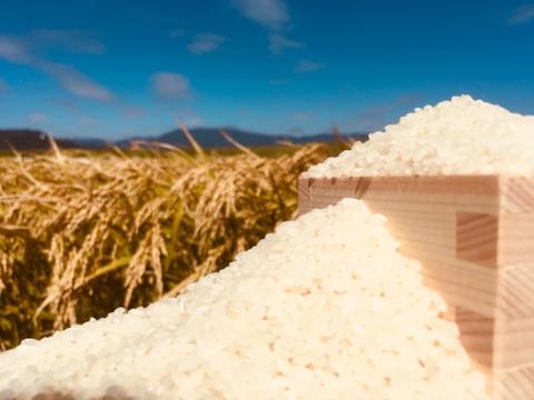 日々の食卓を少し贅沢に☆お米の香りが自慢の佐賀びより(玄米5kg)