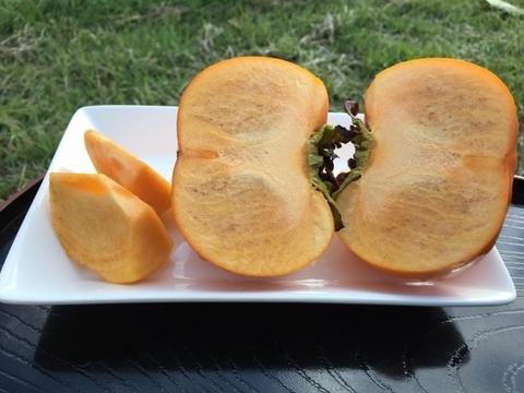 【今が旬!限定販売中】サクッとカリカリの食感 糖度18度以上 次郎柿