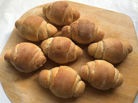 【超貴重な有機JAS認証パン】パンセット⑥:麦の栽培から一貫生産 自然栽培小麦のみ使用したテーブルロール×8