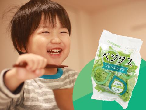 【子どもと地球の健康に】ノハム認証 パクパク食べられる緑黄色野菜! フリンジレタス6袋セット★収穫即日直送★ サステイナブルなレタスです。野菜嫌いのお子様にもぴったり。 サラダやお肉にも合います。